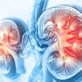 Kidney diseases higher the risks of Covid19?